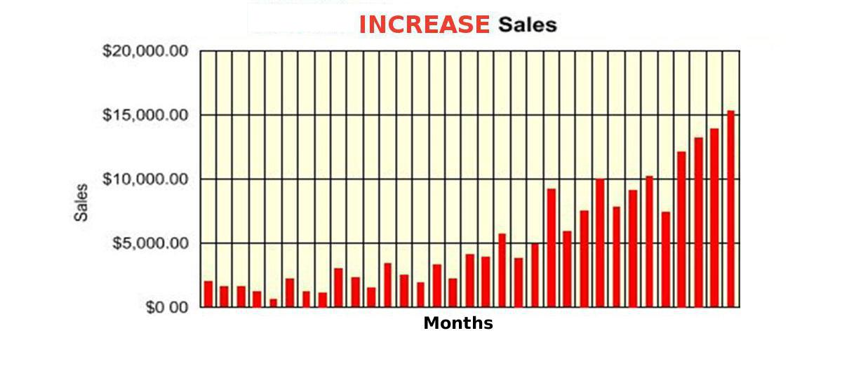 Increase sales online with web site promotion and marketing